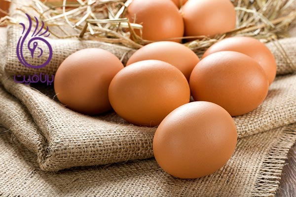 با این مواد غذایی، مو و ناخن خود را تقویت کنید- تخم مرغ- برنافیت دکتر کرمانی