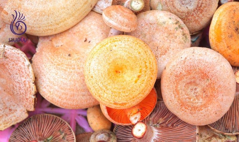 مواد غذایی شگفت انگیز برای بهبود سیستم ایمنی بدن