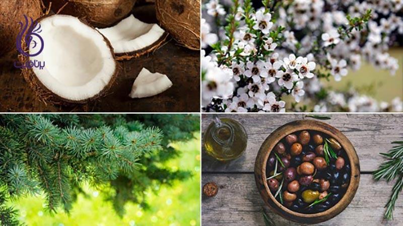 بهترین مواد طبیعی برای درمان پسوریازیس کدامند؟ ، برنافیت