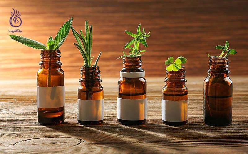 گیاهان ضد التهابی مفید برای پروستات