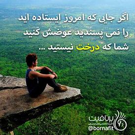 اگر جایی که امروز ایستاده اید را نمی پسندید، عوضش کنید، شما که درخت نیستید.