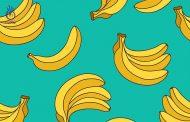 آیا تک غذایی به کاهش وزن کمک می کند؟