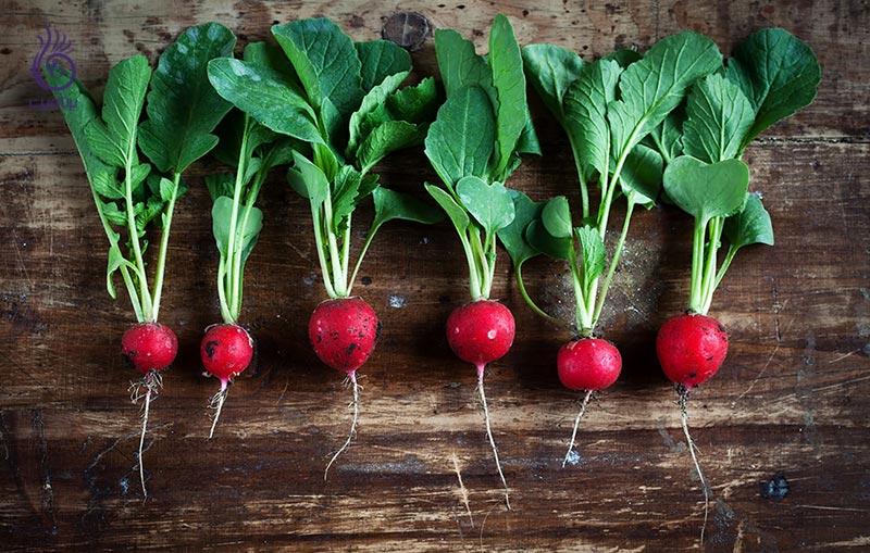 10 غذایی که خلق و خوی تان را بهتر می کند