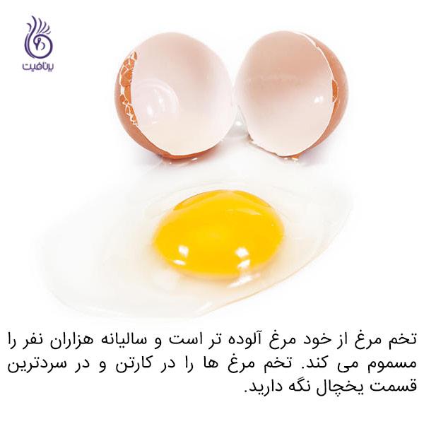 میکروب ها اغلب در چه غذاهایی پنهان می شوند - تخم مرغ