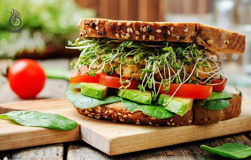 ساندویچ سالم تری تهیه کنیم - تغذیه - برنافیت
