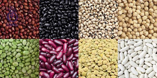 تغذیه و رشد ناخن - لوبیا - برنافیت