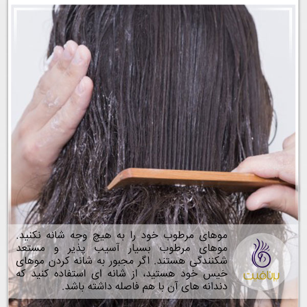 عادت های غلط - شانه کردن موهای مرطوب - برنافیت