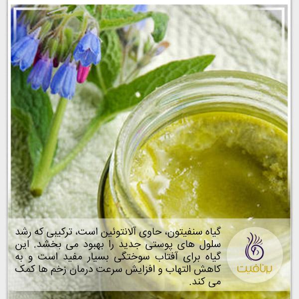 درمان آفتاب سوختگی با گیاهان دارویی - برنافیت