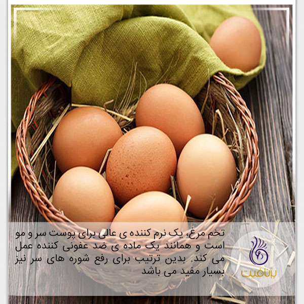 درمان شوره سر- تخم مرغ- برنافیت