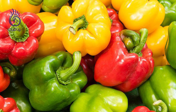غذاهای رژیمی- فلفل دلمه- برنافیت