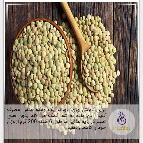 پروتئین- عدس- برنافیت
