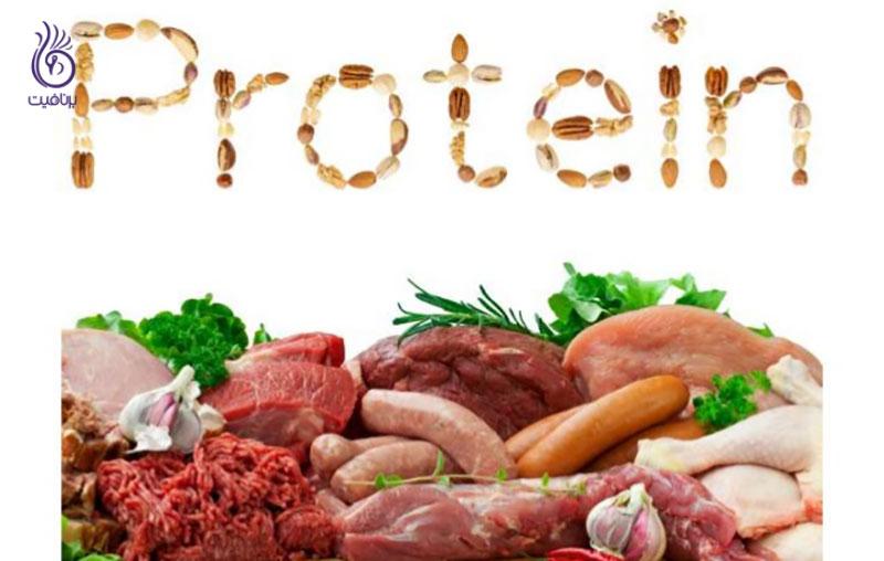 پروتئین- تغذیه- برنافیت