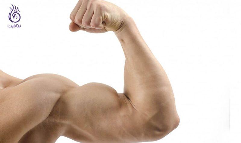 بازو - عضلات شانه و بازو- ورزش- برنافیت