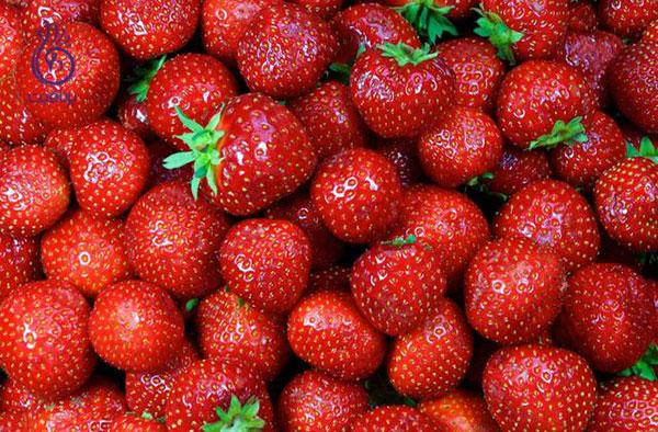 غذاهای کم کالری- توت فرنگی- برنافیت