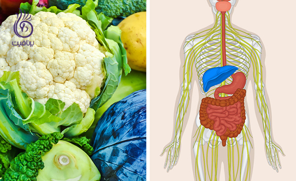 مواد غذایی قلیایی- گل کلم- برنافیت