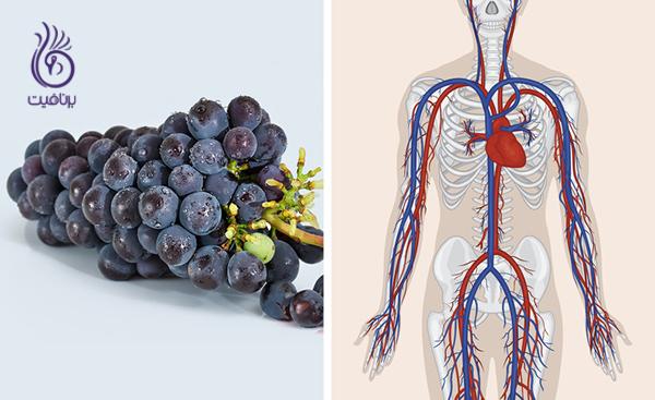 مواد غذایی قلیایی- انگور- برنافیت