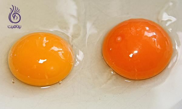 بیوتین و مو - زرده تخم مرغ- برنافیت