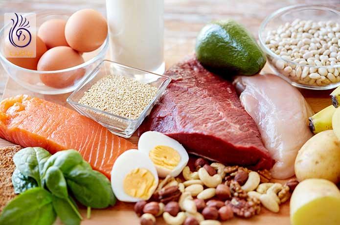 غذاهای چاق کننده - پروتئین - برنافیت دکتر کرمانی